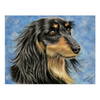 Carte Postale Marcus - art aux cheveux longs de teckel