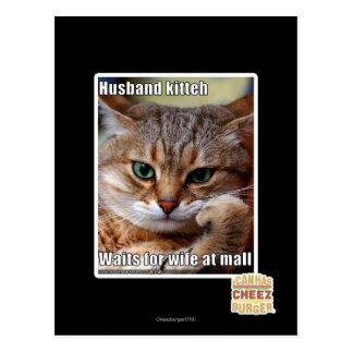 Carte Postale Mari Kitteh