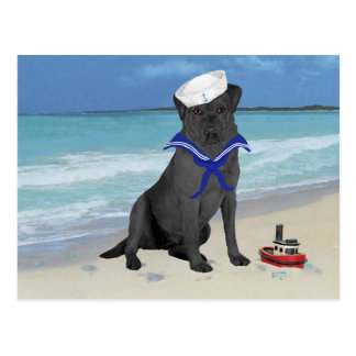 Carte Postale Marin noir de labrador retriever