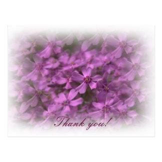 Carte Postale Merci - fleurs roses rêveuses