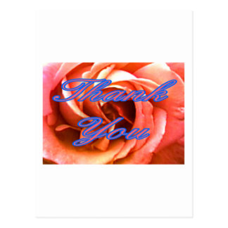 Carte Postale Merci rose 1 de Cantorbéry 4 le Gi de Zazzle de