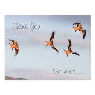 Carte Postale Merci rouge de cerf-volant