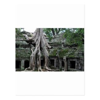 Carte Postale merci temple de prohm au Cambodge