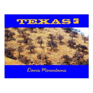 Carte Postale Mesquite du Texas