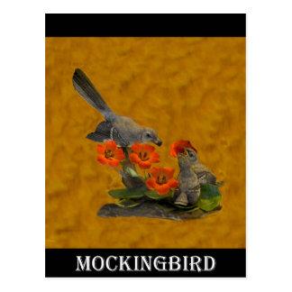 Carte Postale Moqueur (Arkansas, la Floride, Mississippi, le