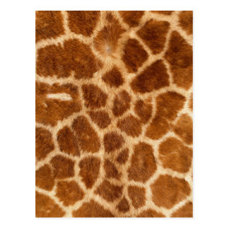 Carte Postale Motif brouillé de fourrure de girafe
