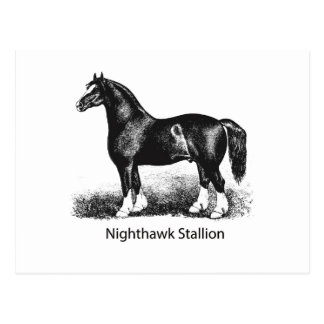 Carte Postale Multiple choisi par StallionProduct de Nighthawk