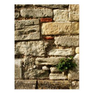 Carte Postale Mur en pierre. Avec la petite usine