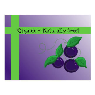 Carte Postale Myrtilles organiques