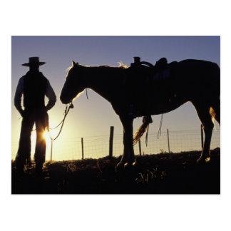 Carte Postale N.A., Etats-Unis, Orégon, Sénèque, ranch de