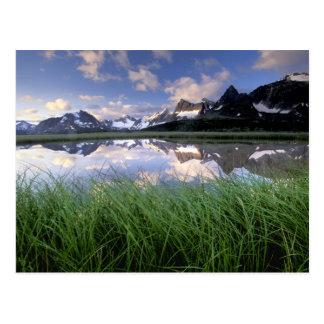 Carte Postale Na, Canada, Alberta, vallée de Tonquin. Jaspe