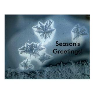Carte Postale Neige bleue