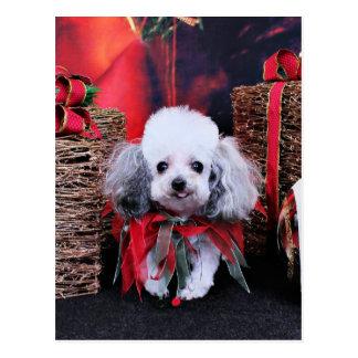Carte Postale Noël - caniche - Lilly
