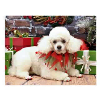 Carte Postale Noël - caniche - Sophie