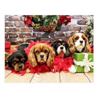 Carte Postale Noël - cavalier - pois doux, lis, pavot rose
