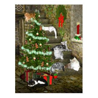 Carte Postale Noël de chat