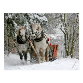 Carte Postale Noël de chevaux de trait
