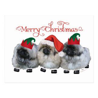 Carte Postale Noël de trois chiots de Pekingese