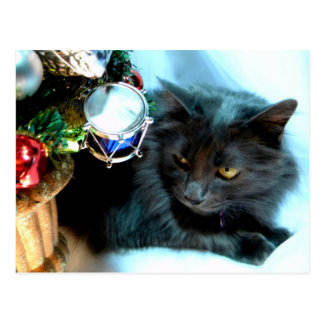 Carte Postale Noël gris Kitty II