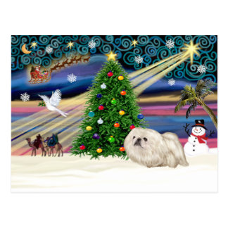 Carte Postale Noël Magie-Pekingese-Blanc