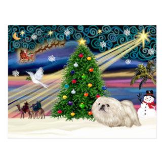 Carte Postale Noël Pekingese magique (blanc)