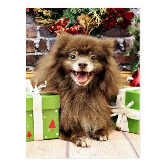 Carte Postale Noël - Pomeranian - Fred