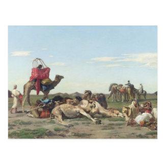 Carte Postale Nomades dans le désert, 1861