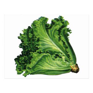 Carte Postale Nourritures vintages, légumes verts de laitue de