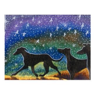 Carte Postale Nous trois chiens de lévrier