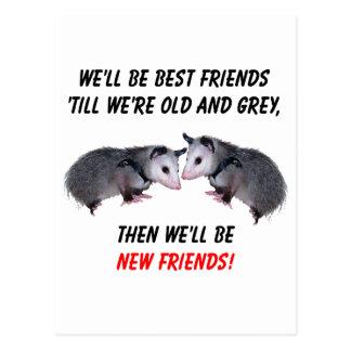 Carte Postale Nouveaux vieux amis