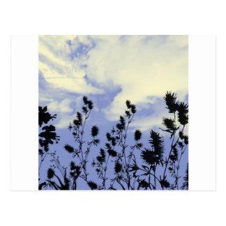 Carte Postale nuages