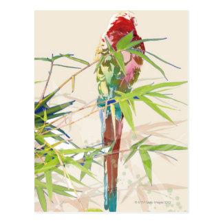 Carte Postale Oiseau avec le feuille en bambou
