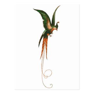 Carte Postale Oiseau d'art de cru de paradis