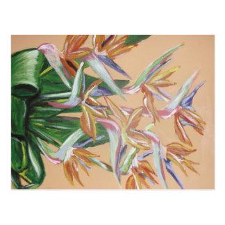 Carte Postale Oiseau des fleurs de paradis