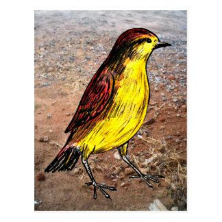 Carte Postale Oiseau jaune canari
