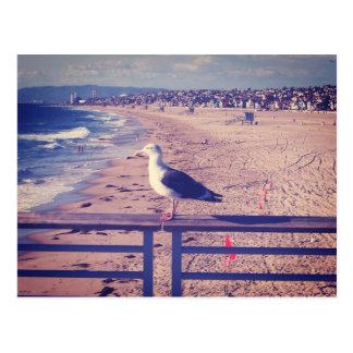 Carte Postale Oiseau sur un rail