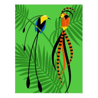 Carte Postale Oiseaux du paradis colorés lumineux