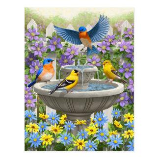 Carte Postale Oiseaux et jardin d'agrément colorés de Bath