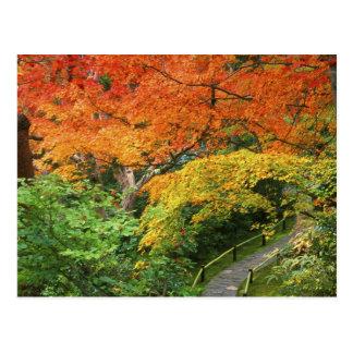 Carte Postale Okochi Sanso, Arashiyama, Kyoto, Japon 2
