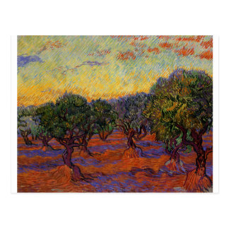 Carte Postale Oliviers - Vincent van Gogh