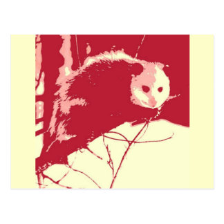 Carte Postale Opossum d'art de bruit