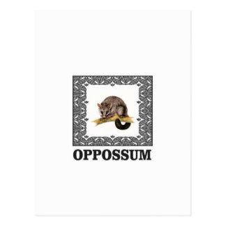Carte Postale opossum d'opa
