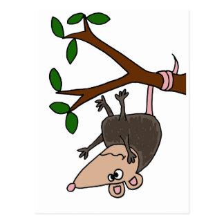 Carte Postale Opossum humoristique balançant de l'arbre