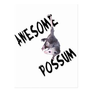 Carte Postale Opossum impressionnant d'opossum