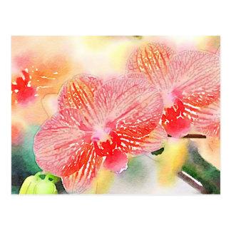 Carte Postale Orchidées d'aquarelle