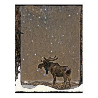 Carte Postale Orignaux dans la neige
