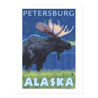 Carte Postale Orignaux la nuit - Pétersbourg, Alaska