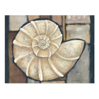 Carte Postale Ormeau Shell