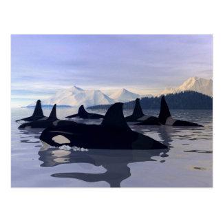 Carte Postale Orque lumineuse de l'eau