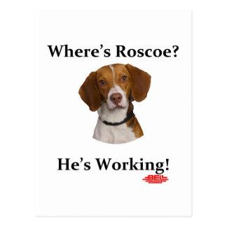 Carte Postale Où est Roscoe ?
